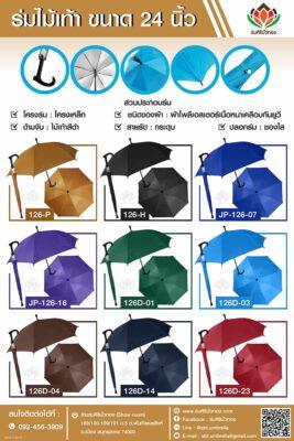 catalog-stick-color-wood-handle-umbrella-24inch